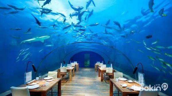 nhà hàng ở maldives