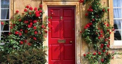 4 màu sơn cửa nhà cần tránh nếu không muốn nghèo mạt kiếp