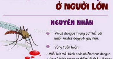 Dấu hiệu nhận biết bệnh sốt xuất huyết trong từng giai đoạn